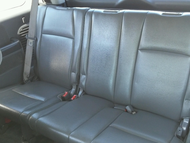 car upholstery mold gone