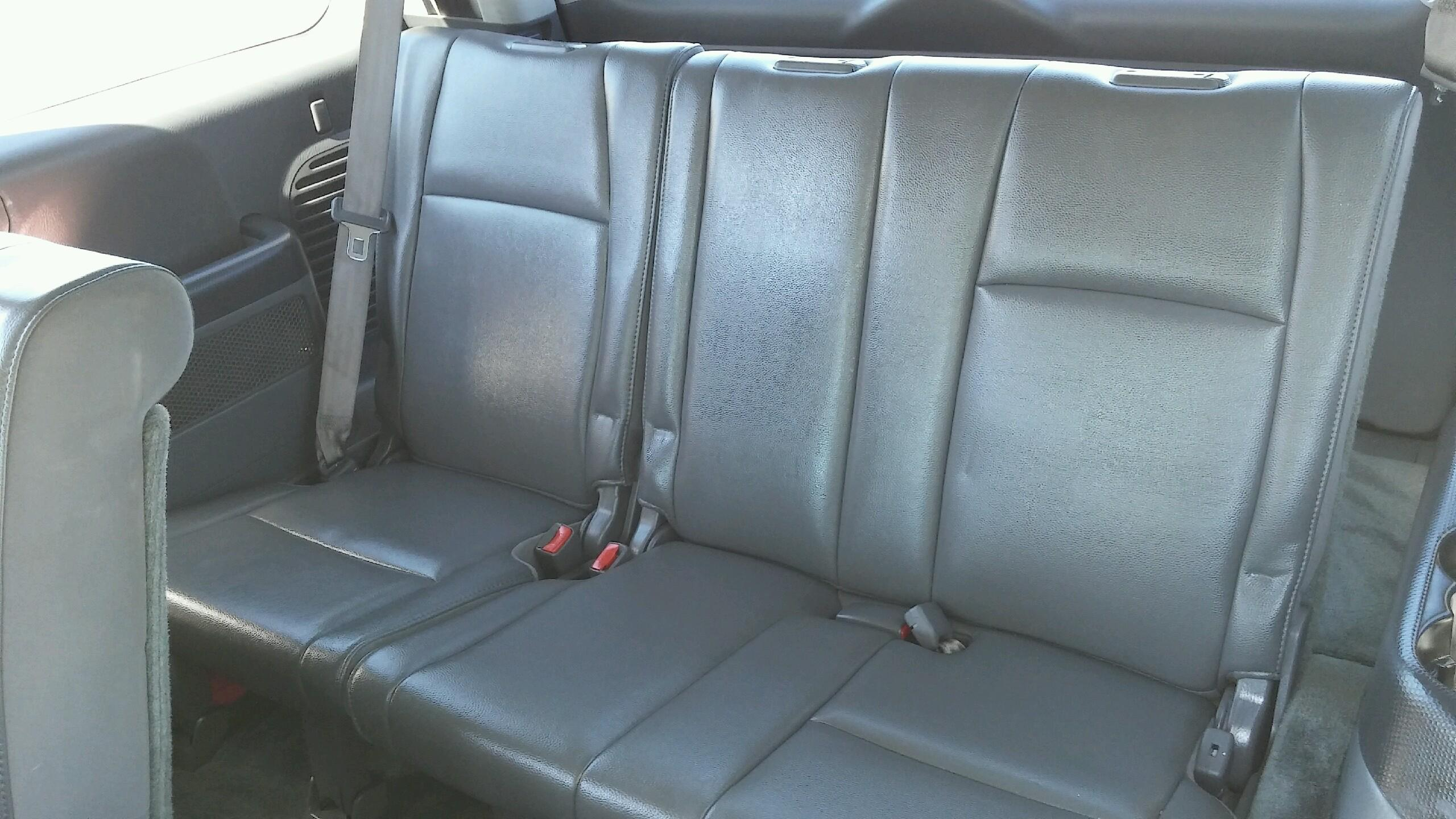 Remove Mold On Honda Pilot Interior Detail Daddy