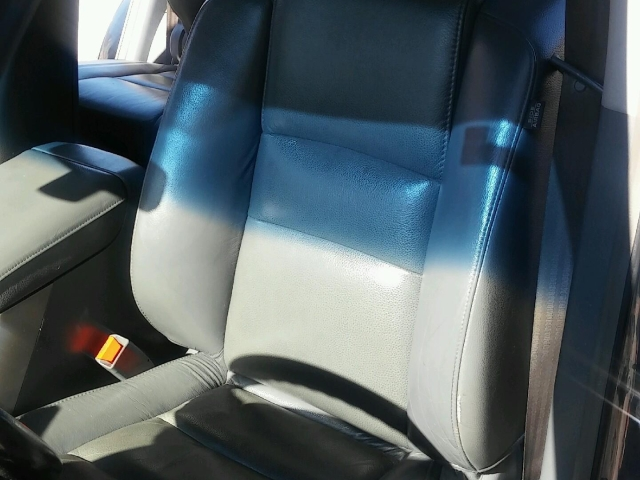 detailing removes car mold