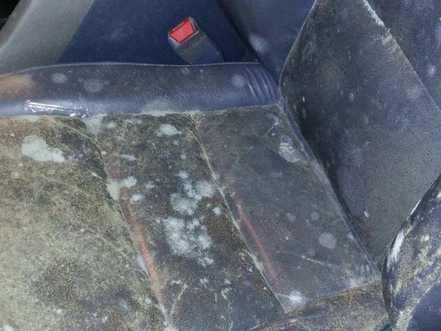 car interior mold